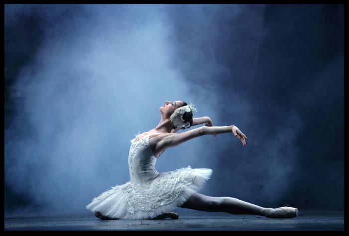 SWAROVSKI DANCE OF THE DYING SWAN